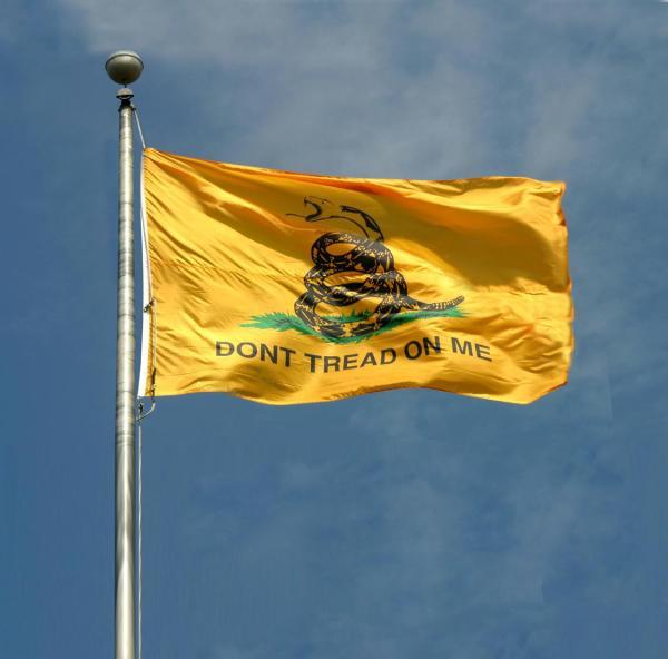gatsenflag1-1149.jpg