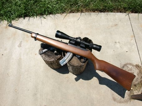 ruger-10-22-scoped-1015.jpg